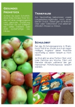 Flyer Schulessen - Homepage_4